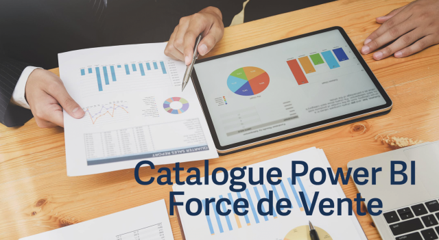 Catalogue Power BI Force de vente